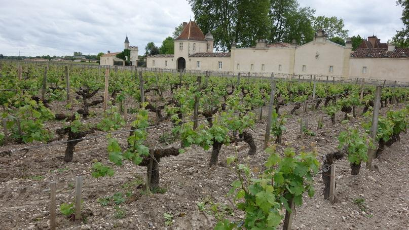 терруар Château Rauzan-Ségla