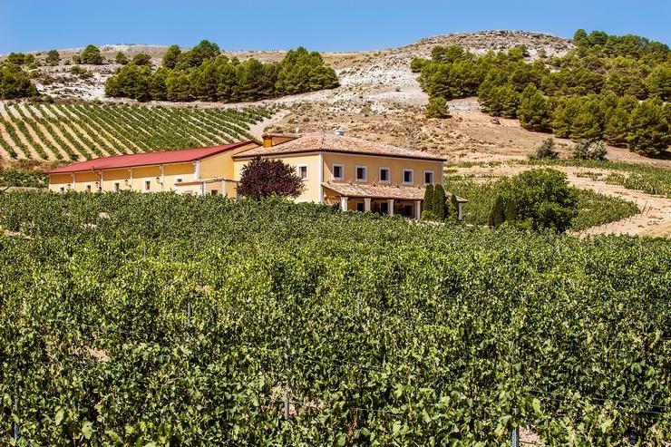 Spain_winery