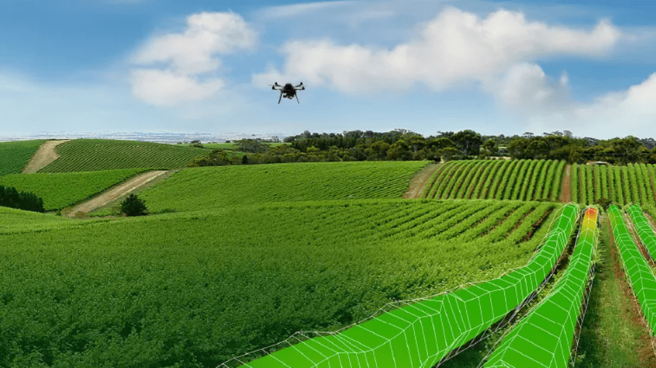 Scanopy auscultates the French vineyards from the sky