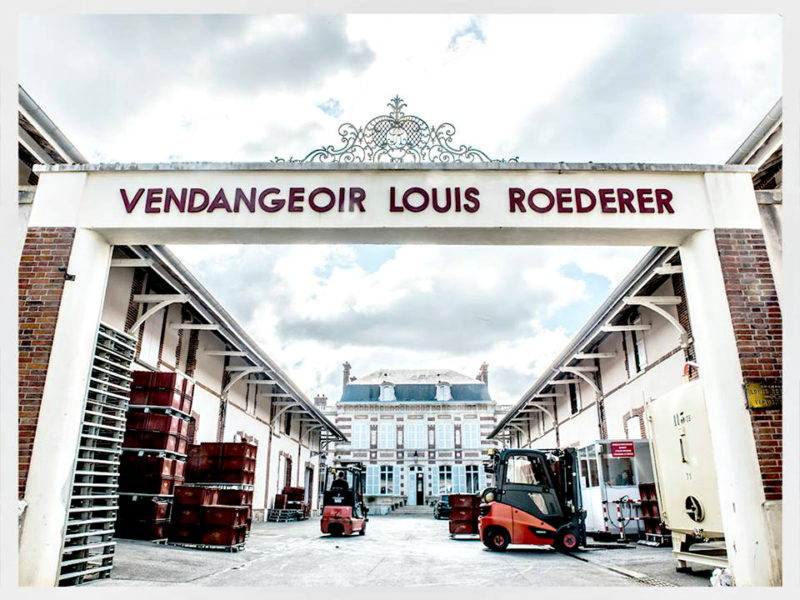 Louis Roederer Winery